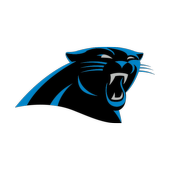 Panthers DST